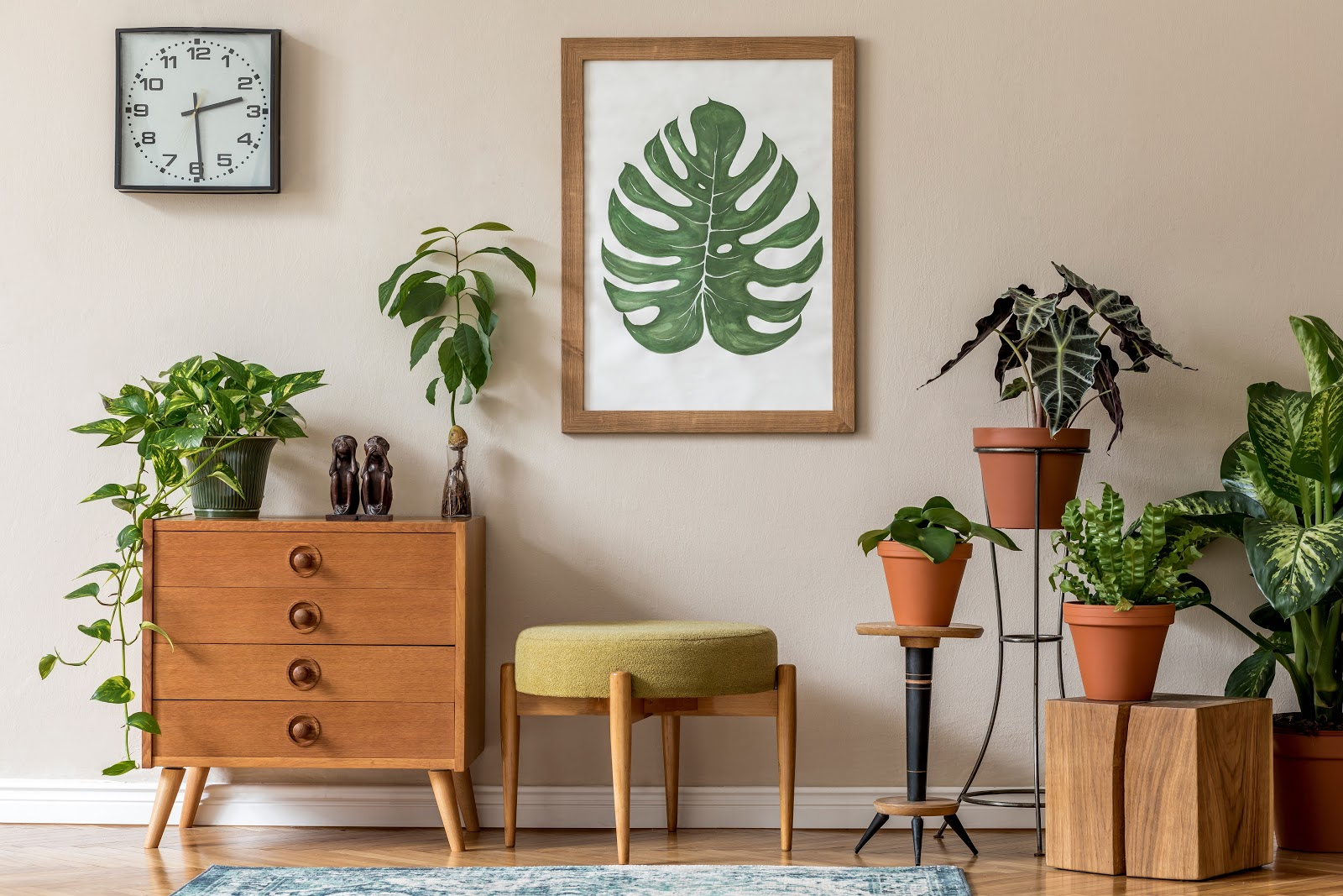 high end apartment with indoor plants
