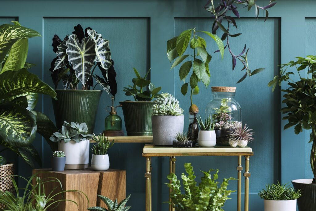 apartments with plants from best nurseries in Los Angeles